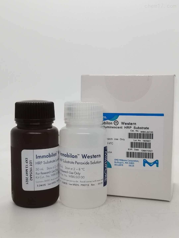 Millipore发光底物HRP(ECL发光液)