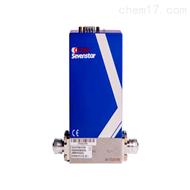 DS300七星华创DS系列质量流量控制器