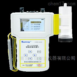 ZR-5330A/B型智能質量流量計