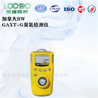 加拿大BW便携式臭氧检测仪GAXT-G