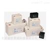 雄狮蓄电池12V系列华北区总销售