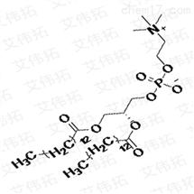 二肉豆蔻酰基卵磷脂DMPC