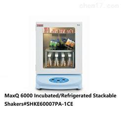 MaxQ6000摇床