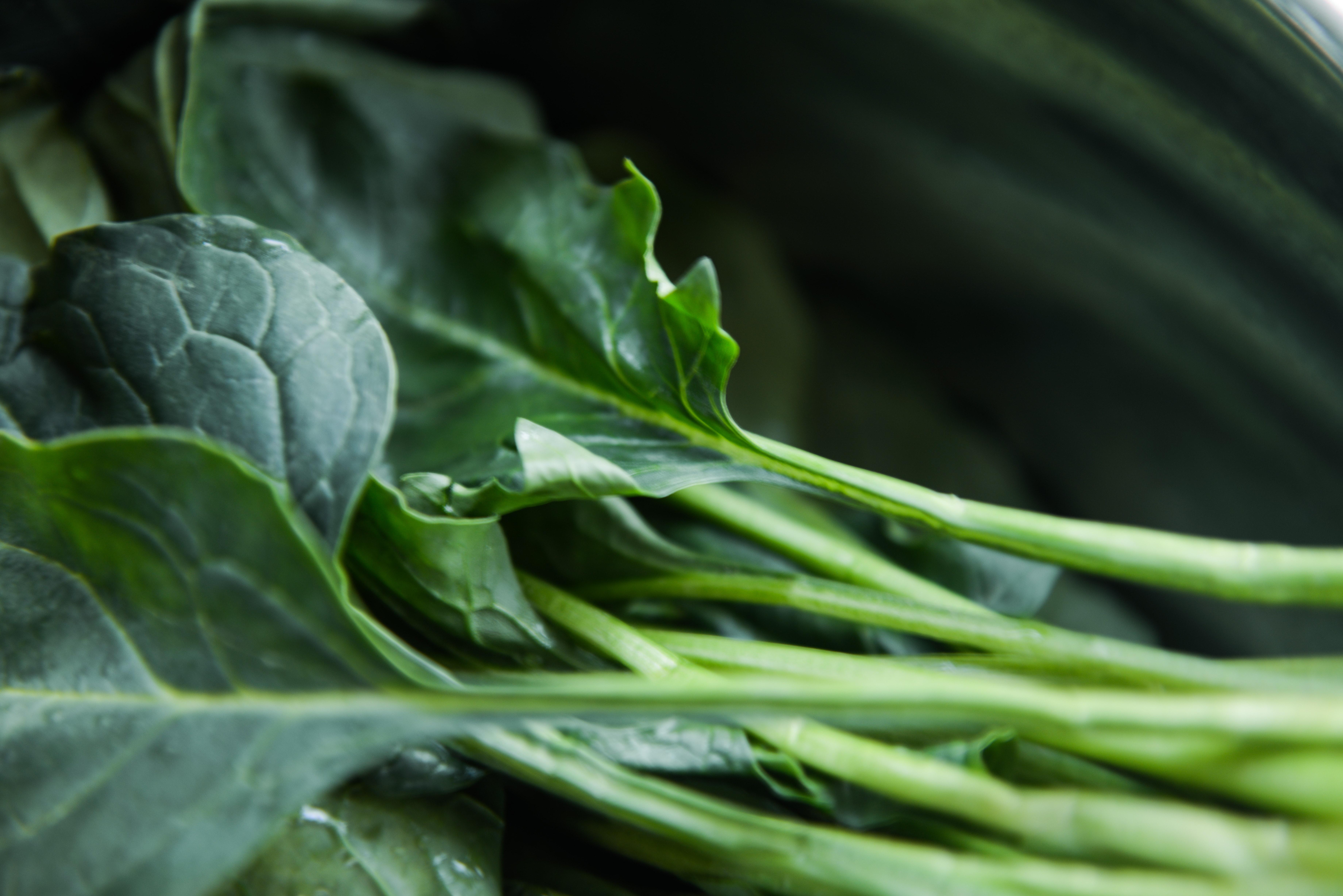 改进数据采集方法 农科院提升农残筛查效率