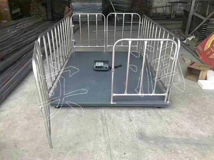 带围栏电子秤