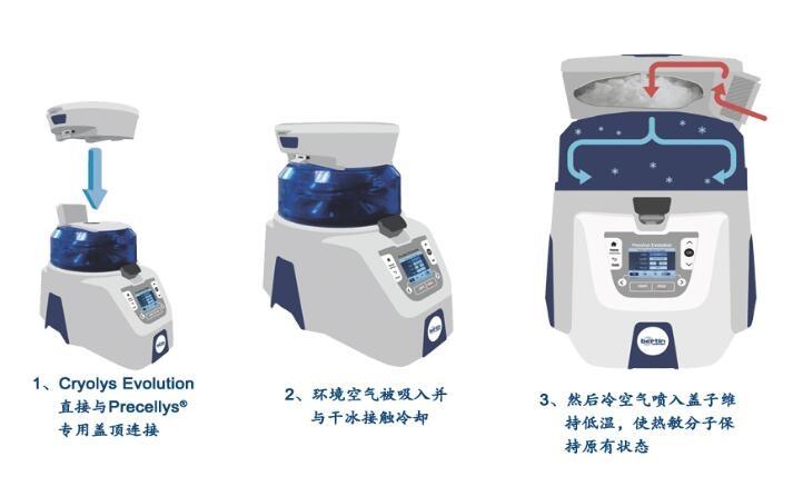 核酸提取研磨器