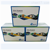 小鼠胸腺素β4(Tβ4)酶联免疫试剂盒