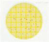 6448Petrifilm环境李斯特菌测试片6448美国3M6448