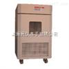 XT5415-DHC80/DHC150/DHC250/DHC400湿热试验箱/长霉试验箱