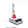Thermo ScientificSP88857195陶瓷面板加热搅拌器