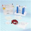 垂直电泳系统E2010-PA/E2010-PCA/E2010-BM